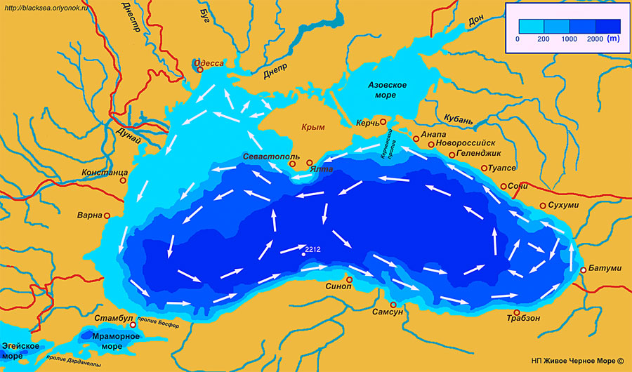 Течения в Черном море